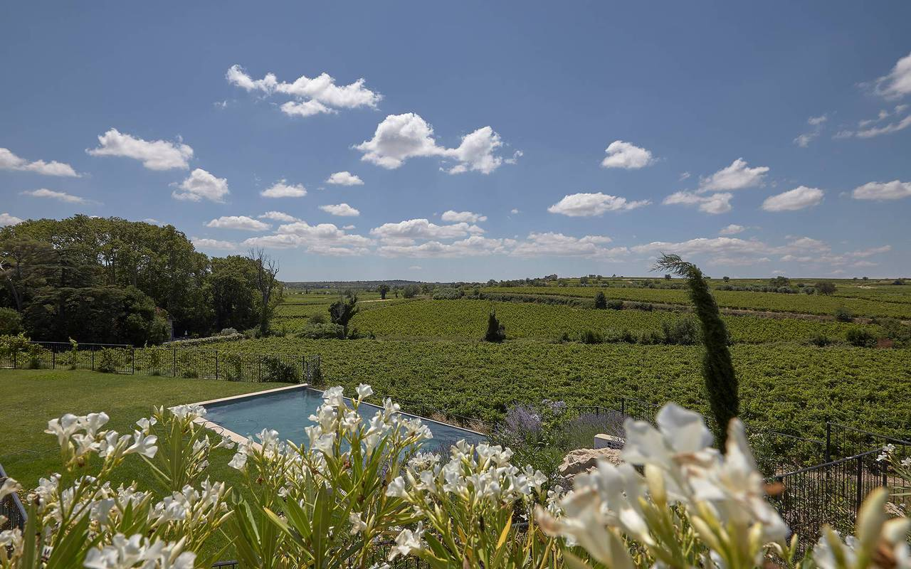 view of the garden with pool and the vineyards in one of our luxury self catering in Languedoc, Château St Pierre de Serjac.