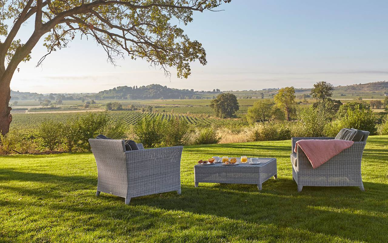 Park overlooking the vineyards in our wedding venue in the south of France, Château de Serjac.