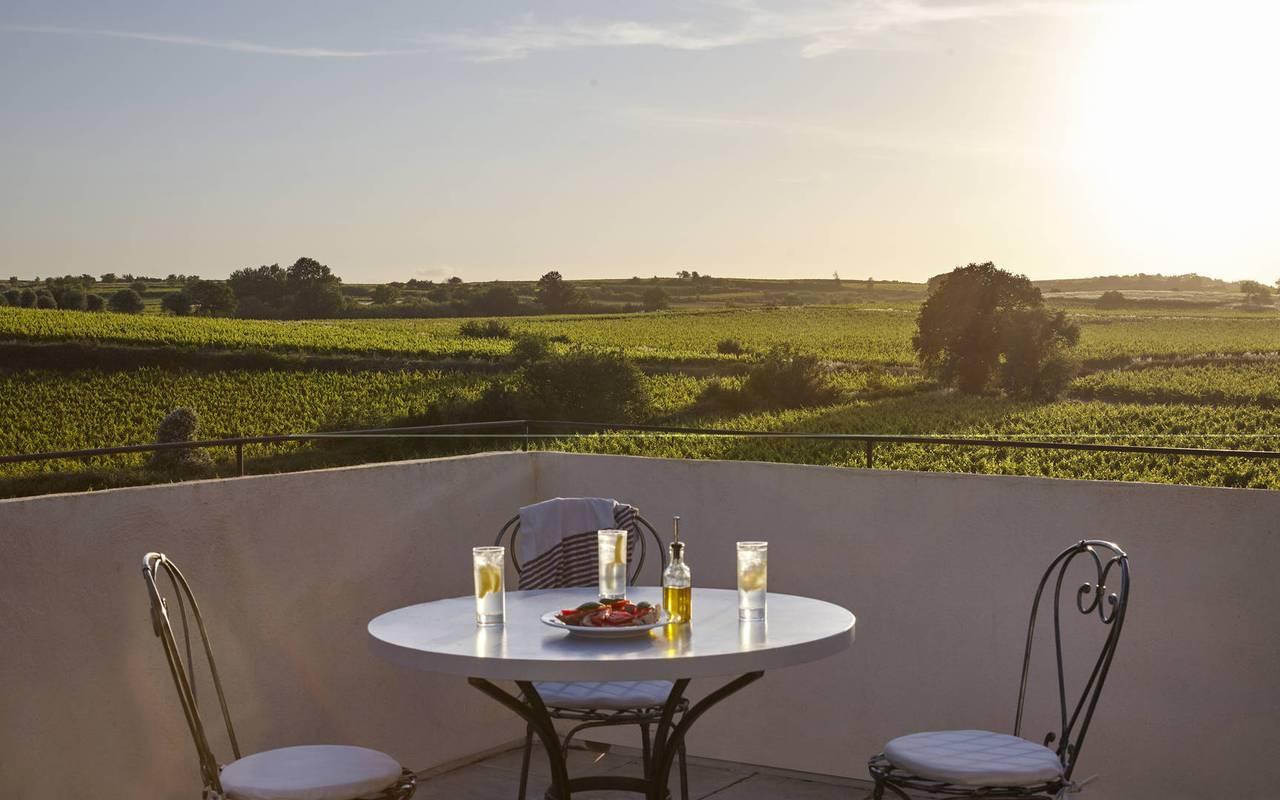 Terrasse surplombant les vignes dans notre location de maison dans l'Hérault, le Château St Pierre de Serjac.