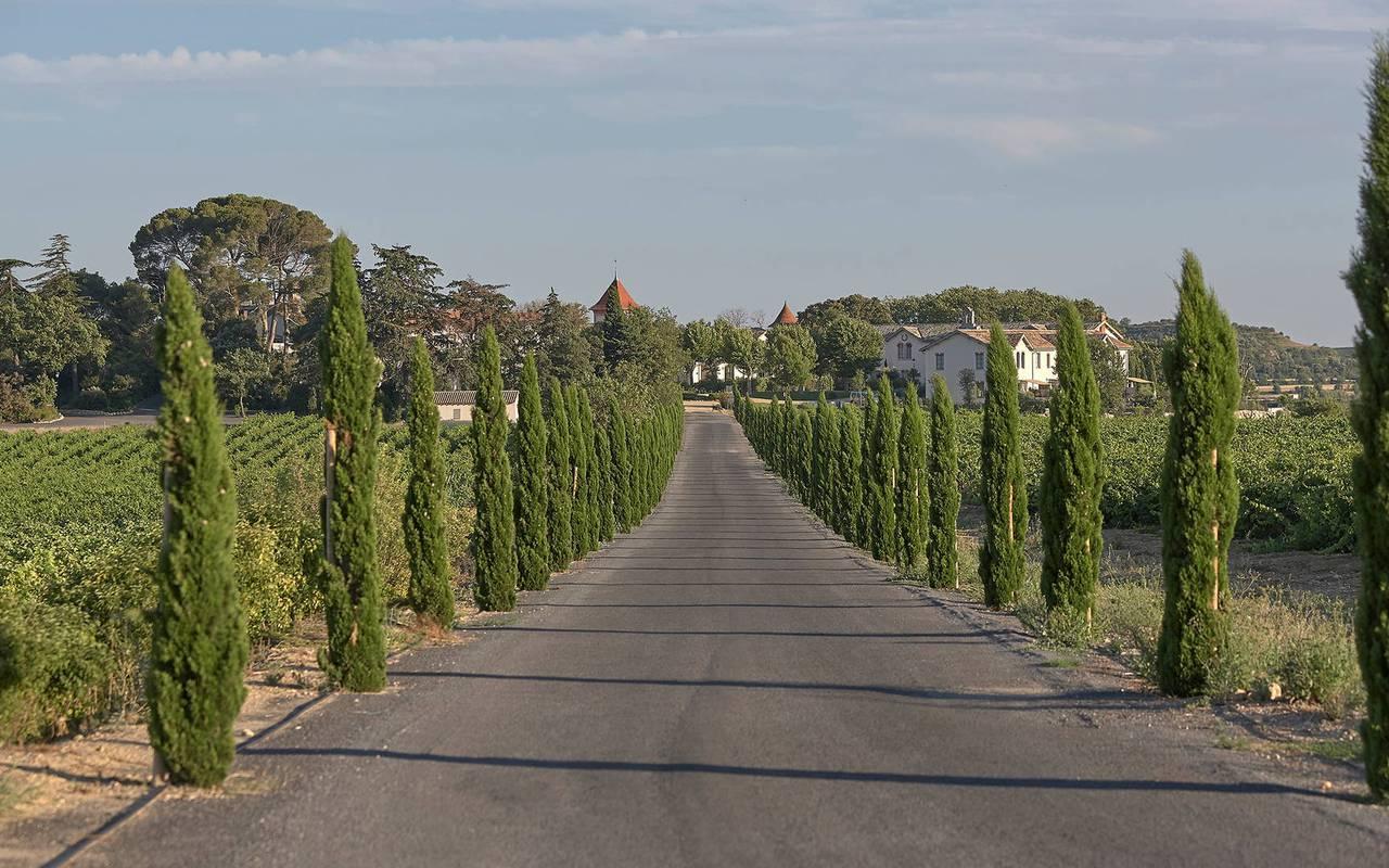 Route pour accéder au  Château de Serjac, pour un séjour insolite dans l'Hérault.
